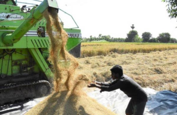 'Contract farming will pull farmers out of poverty'