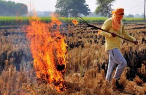 Air pollution: Supreme Court asks Centre to come out with concrete steps to deal with stubble burning