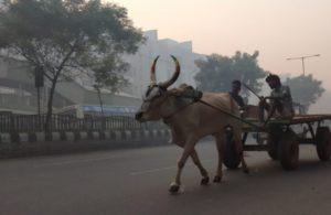 Delegation of 500 farmers from Kerala leaves for Delhi