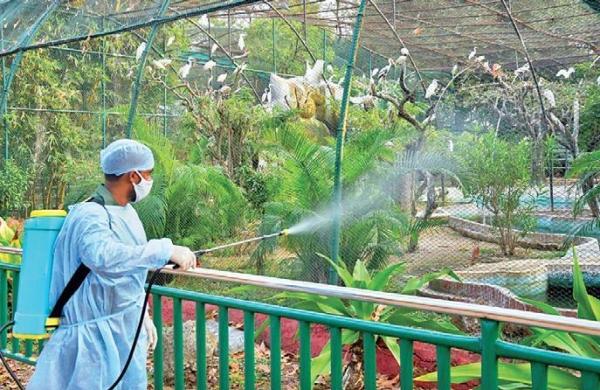 Kanpur zoo shut after bird flu confirmed in dead fowls