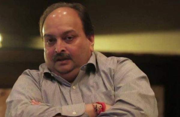 Mehul Choksiplea to pre-screen Netflix series'Bad Boy Billionaires' academic exercise: Delhi HC