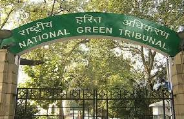 NGT directs SPCBs to follow CPCB guidelines to check pollution caused due to gold testing