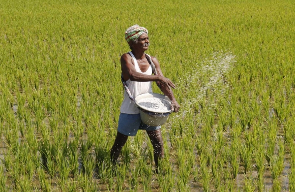 Maharashtra:Over Rs 1 crorerecovered from farmers found ineligible under Central scheme