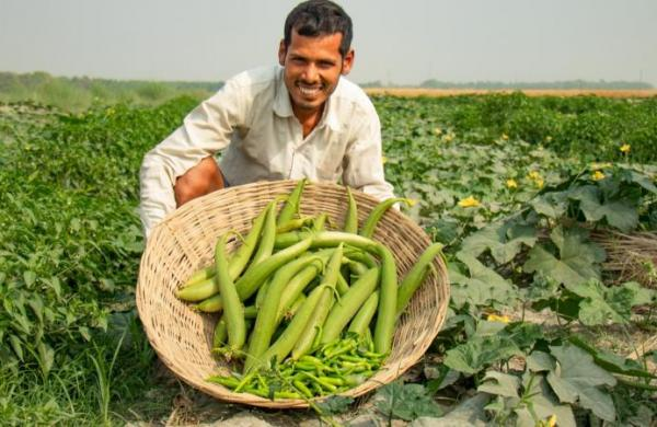Bihar government launches home delivery of vegetables in Patna, Motihari amid surge in Covid cases