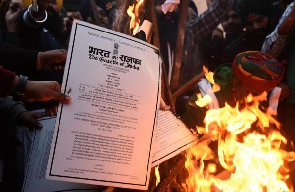 Farmers burn copies of farm laws near residences of BJP leaders in Punjab