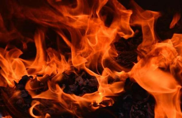 Haryana resident set on fire, dies; family alleges accused part of farmers' protest
