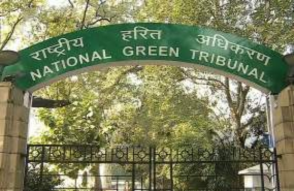 Person undertaking hazardous activities for commercial gains is liable for loss: NGT