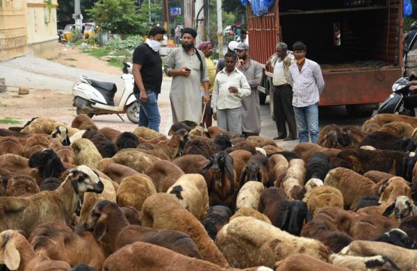 UP prohibits gatherings of over 50, animal sacrifice at public places on Bakrid