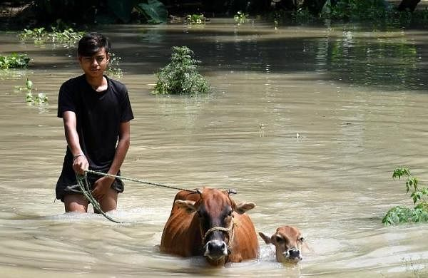 Keeping close watch on Assam flood situation, 10 NDRF teams deployed till now: MHA