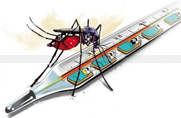 UP: Firozabad DM orders closure of schools till Sep 6 after dengue outbreak in district