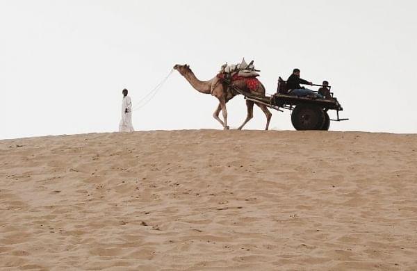IIT-Jodhpur launches initiative to conserve, restore Thar desert