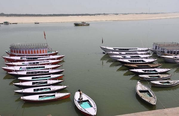 Nearly 30 per cent reduction in fish species in Ganga in four years, says study by Centre